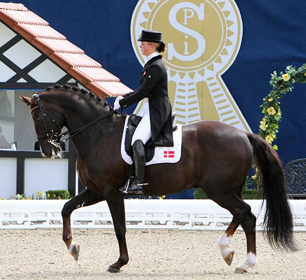 Anna Kasprzak on Donnperignon. © Ken Braddick/dressage-news.com
