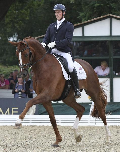 Woodlander Farouche being ridden by Michael Eilberg in 2012 world championships. © Ilse Schwarz/dressage-news.com