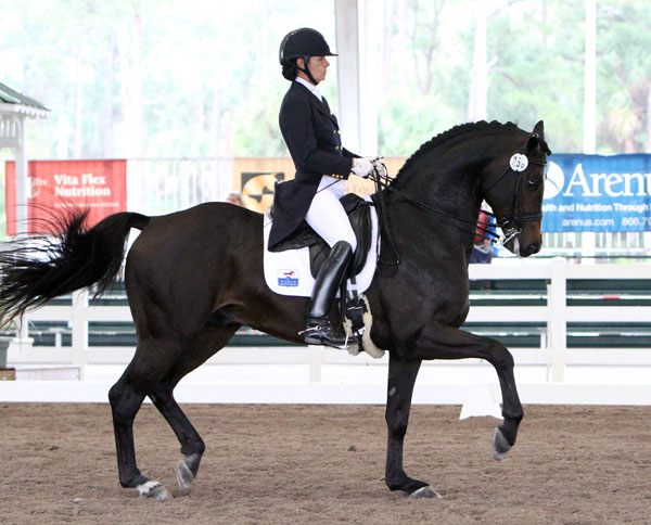 Ali Brock and Rosevelt. © Ken Braddick/dressage-news.com