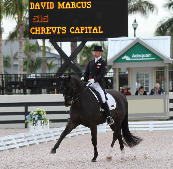 David Marcus and Chrevi's Capital winning the Wellington World Cup Grand Prix. © 2013 Ken Braddick/dressage-news.com