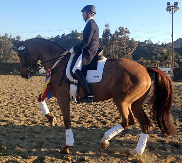Günter Seidel & Coral Reef Wylea in 1st USA CDI Score 70% to Win Grand Prix at Burbank |