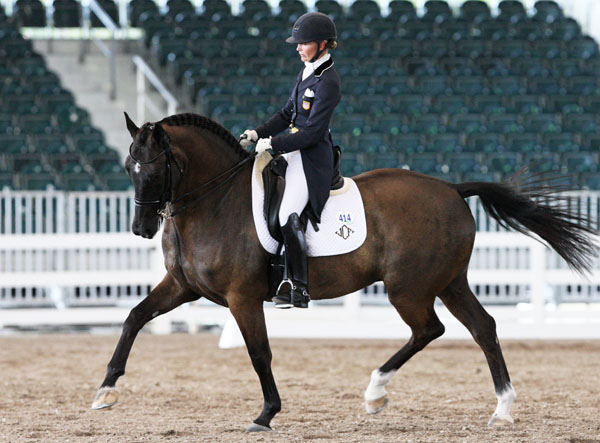 USA's Katherine Bateson-Chandler in 1st CDI With Alcazar 2nd in Hartpury Prix St. Georges |