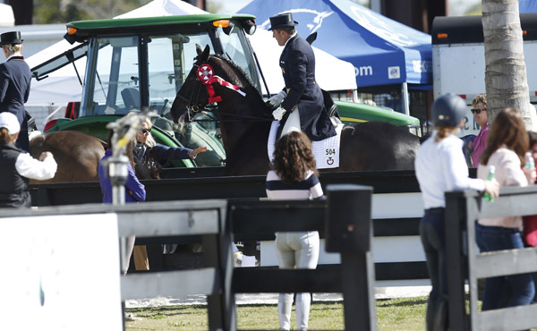 Unidentified person stopping Van the Man ridden by Cesar Parra from running into another combination after the awards ceremony during the Wellington CDI3* Grand Prix.