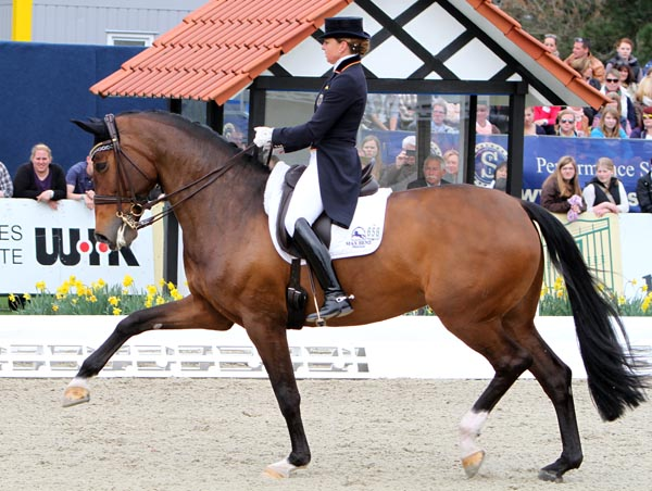 Dorothee Schneider and Forward Looking. © 2013 Ken Braddick/dressage-news.com