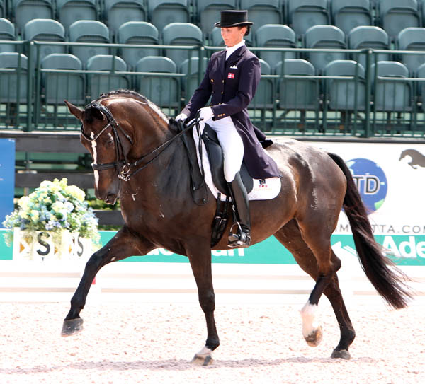Mikala Gundersen riding My Lady for the Europe team at the Wellington Nations Cup. © 2013 Ken Braddck/dressage-news.com