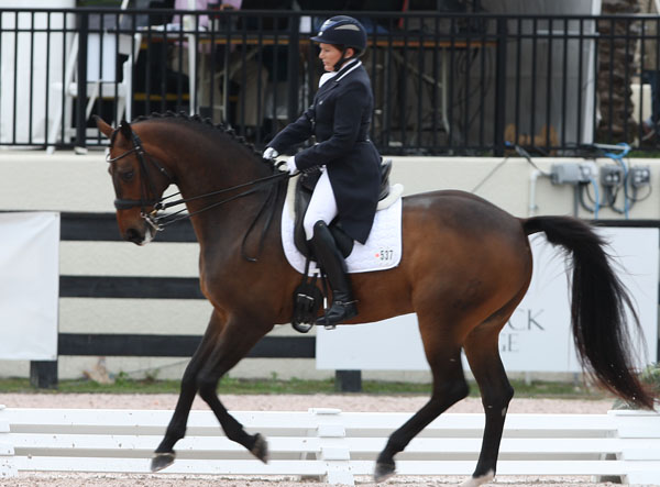 Shelly Francis and Doktor competing in Florida. © 2013 Ken Braddick/dressage-news.com
