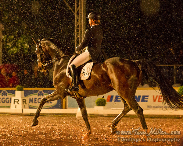 This image by Terri Miller of Isabell Werth on Der Stern perfectly csptures the atmosphere of the Grad Prix Freestyle in heavy rain under lights at Wiesbaden Sunday night. Terri, a photographer and artist known around the world, is traveling with her husband, the American 5* judge Axel Steiner who was a mmber f the ground jury at Wiesbaden, his birthpace. © 2013 TerriMiller.com