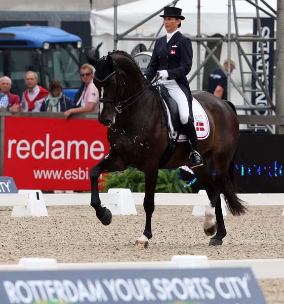 Mikala Gundersen riding My Lady in the Rotterdam Nations Cup. ©2013/Ken Braddick/dressage-news.com
