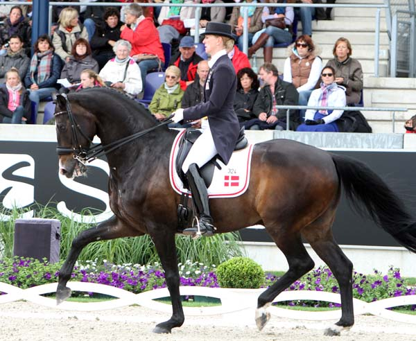 Nathalie zu Sayn-Wittgenstein riding her Olympic veteran Digby to lead Denmark to the silver medal in the Aachen Nations Cup. © 2013 Ken Braddick/dressage-news.com