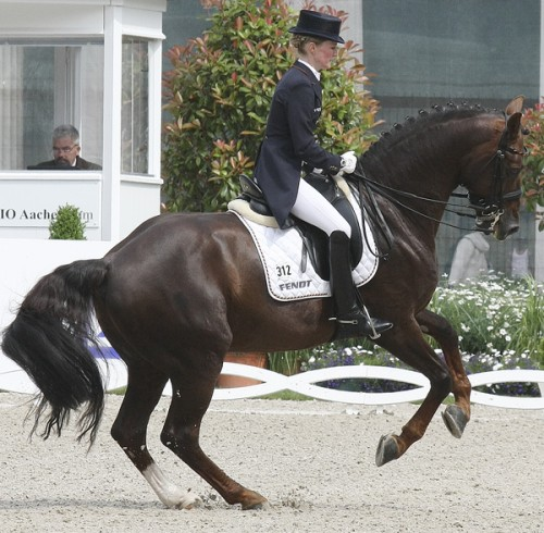 Total balance and confidence in he pirouette with a beautiful contact on the rein ©Ilse Schwarz dressage-news.com
