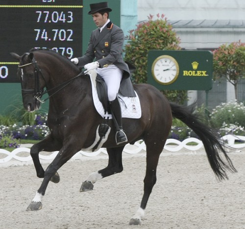 Numberto gains tremendous lift during each stride of his tempi changes. The quality of the changes far surpassing the basic quality of his canter ©Ilse Schwarz dressage-news.com