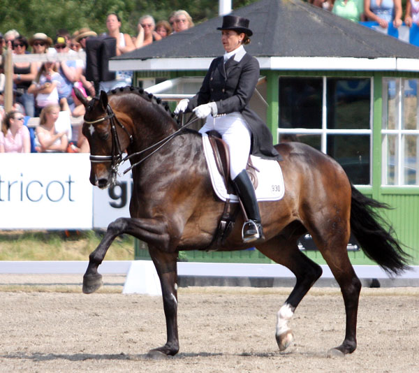Tinne Vilhelmsson-Silfvén on Don Auriello in Falsterbo CDI5* Freestyle. © 2013/Pelle Wedenmark/dressage-news.com