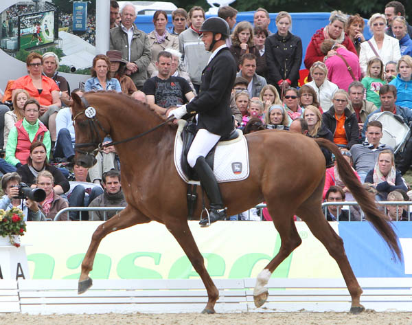 Heiner Schiergen and Discovery OLD who won the six-year-old world championship bronze medal. ©213 Ken Braddick/dressage-news.com