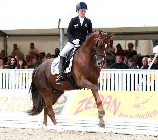 Damon's Delorange with Helen Langehanenberg aboard making one of his big flying changes as part of the canter tour that earned the pair 9.2. ©2013 Ken Braddick/dressage-news.com