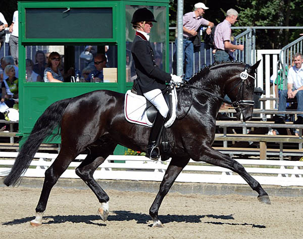 QC Flamboyant ridden by Marita Pundsack 5-year-old German champion. ©2013 Roz Neave/The Horse Magazine
