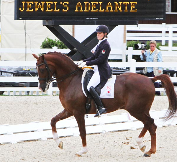 Ashley Holzer and Jewel's Adelante on their way to winning the Dressage at Devon Grand Prix for the Special. ©2013 Ken Braddick/dressage-news.com