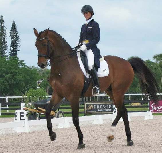 Kelly Layne riding Von Primaire, one of two horses to debut in CDI Grand Prix in USA, launching campaign yo qualify for Australian team at 2014 World Equestrian Games.