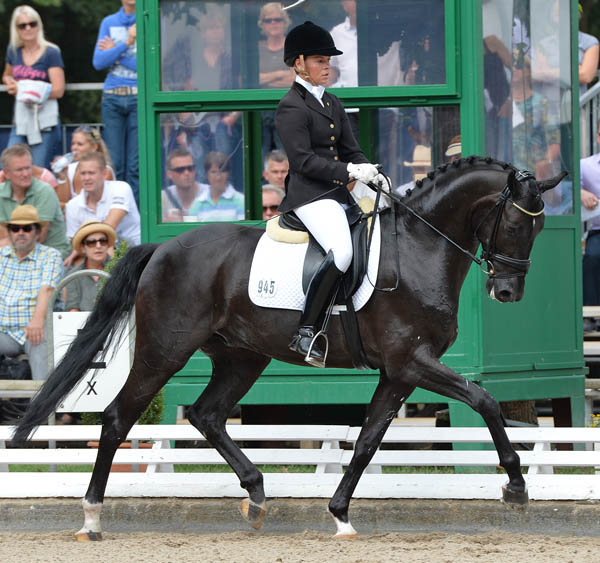 Silver Black Old and Kira Wulferding tied for fourth place on 8.4. © 2013 Roz Neave/The Horse Magazine