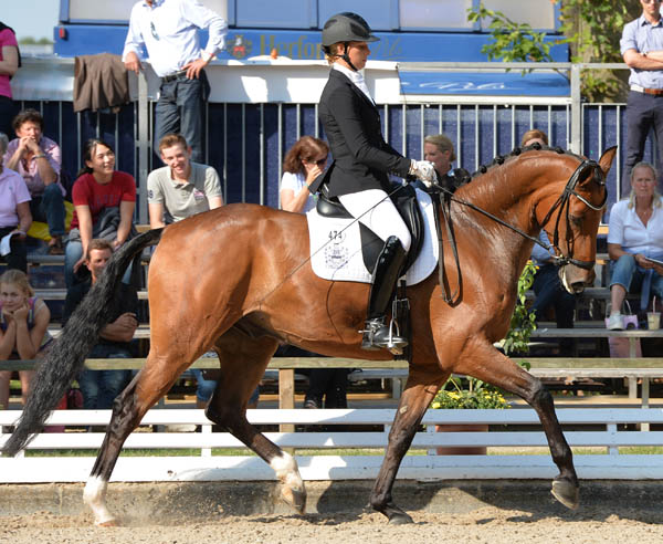 Doubleyou W and Laura Stigler competing at the Bundeschampionate. © 2013 Roz Neave/The Horse Magazine