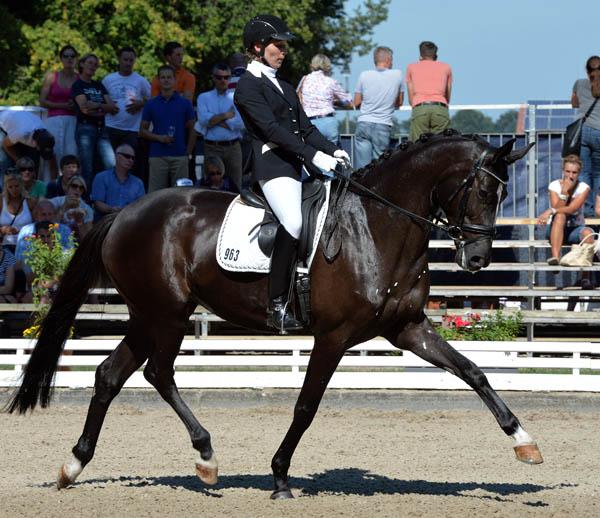 Soiree De Saumur ridden by Ann-Kristin Dorbracht at the Bundeschampionate. © 2013 Roz Neave/The Horse Magazine