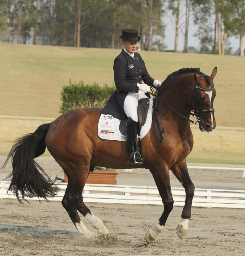 Sheidyn Ashwood of Queensland and her stallion Prestige VDL