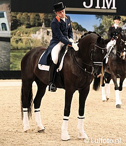 Laurens van Lieren Wins Innovative Knock-Out Dressage at...