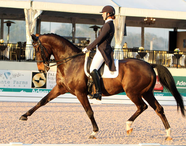 Adrienne Lyle and Wizard competing in the Global Dressage Festival World Cup Grand Prix Special. © 2014 Ken Braddick/dressage-news.com