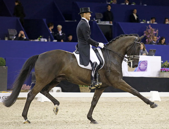 Edward Gal and Glck's Undercover on the way to personal best score at Amsterdam. © 2014 Jenny Abrahamsson/World of Show Jumping
