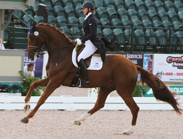 Heather Blitz and Paragin in the Adequan Global Dressage Festival World Cup Grand Prix Special. © 2014 Ken Braddick/dressage-news.com.