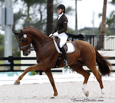Heather Blitz riding Paragon in the World Cup Grand Prix to open the Global Dressage Festival winter circuit. © 2014 SusanJStickle.com