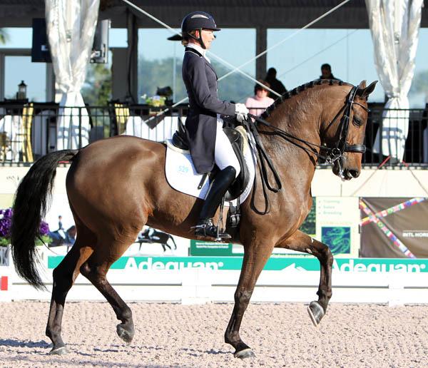 Katherine Bateson-Chandler and Wellnetta intheir first CDI Grand Prix. ©2013 Ken Braddick/dressage-news.com