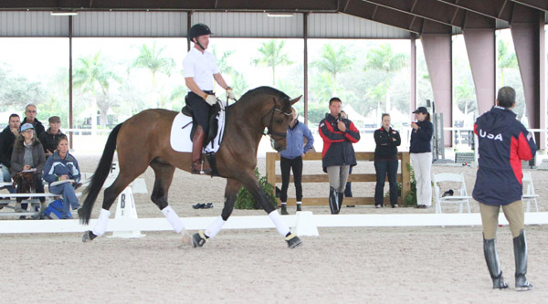 Matt Johnson and the five-year-old Qasanova. © 2014 Ken Braddick/dressage-news.co