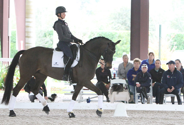 Silva Martin with the Rosa Cha W at the USEF/USET Foundation Pipeline clinic. © 2014 Ken Braddick/dressage-news.com