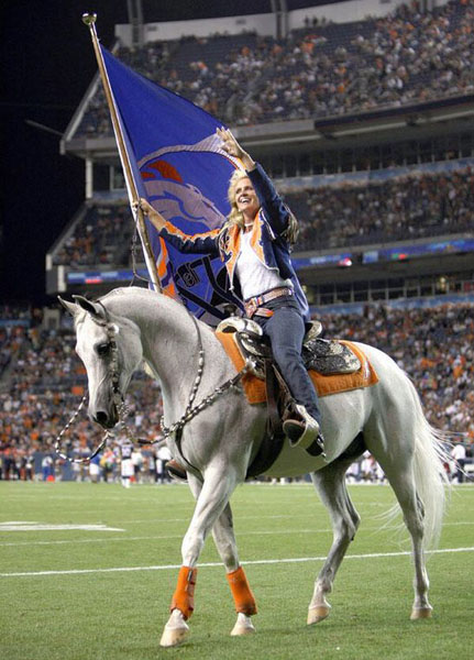 Thunder, the Arabian horse that's the Denver Broncos mascot to be flown to New York for Super Bowl XLVIII. Photo courtesy of NFL