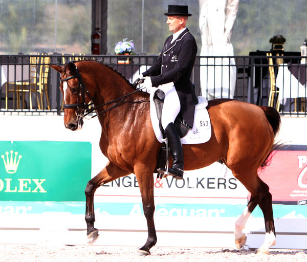 Lars Petersen and Mariett in the World Cup Grand Prix. © 2014 Ken Braddick/dressage-news.com
