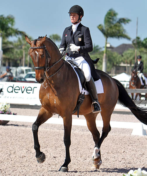 Leslie Morse riding King's Excalibur in the first Grand Prix by the nine-year-old gelding, son of Leslie's Kingston. © 2014 Ken Braddick/dressage-news.com