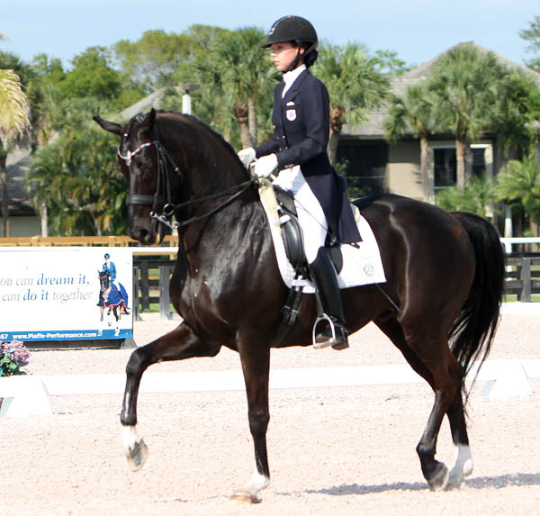 Sagacious HF being competed by Chase Hickok for the first time--in a national Under-25 Grand Prix at the Adequan Global Dressage Festival. © 2014 Ken Braddick/dressage-news.com