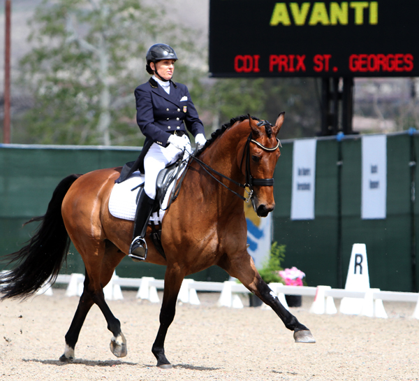 Elizabeth Ball and Avanti. © 2014 Ken Braddick/dressage-news.com