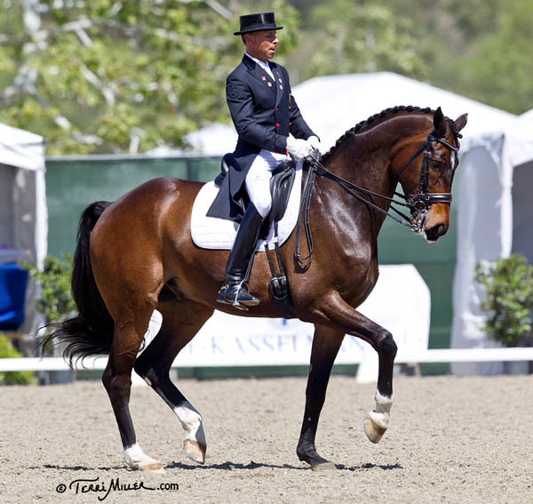 Steffen Peters and Legolas competing in the Festival of the Horse CDI3* Freestyle. © 2014 Terri Miller