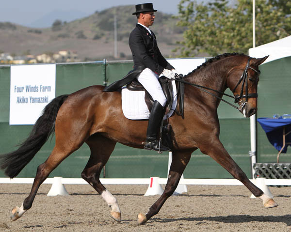 Steffen Peters and Rosamunde. © 2014 Ken Braddick/dressage-news.com