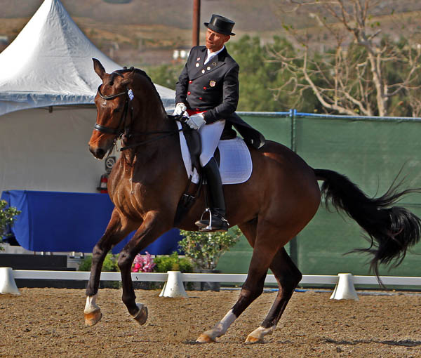 Rosamunde ridden by Steffen Peters performing pirouette. © 2014 Ken Braddick/dressage-news.com