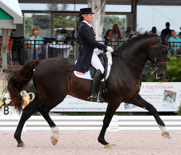Tina Konyot and Caslecto V in the Wellington CDI5* Grand Prix. © 2014 Ken Braddick/dressage-news.com
