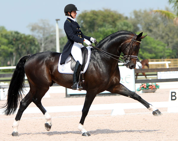 Benetton Dream with Tinne Vilhelmsson-Silfvén showing off his extended trot. © 2014 Ken Braddick/dressage-news.com