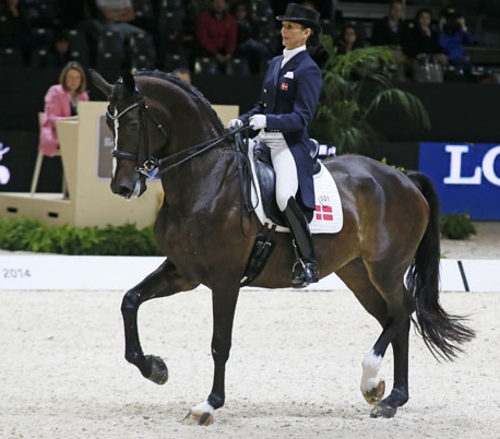 Mikala Münter Gundersen riding My Lady in the World Cup Final Freestyle. © 2014 Jenny Abrahamsson/WorldofShowJumping.com