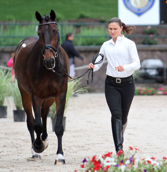 Adrienne Lyle and Wizard looking to make the United States World Equestrian Games tem. © 2014 Ken Braddick/dressage-news.com
