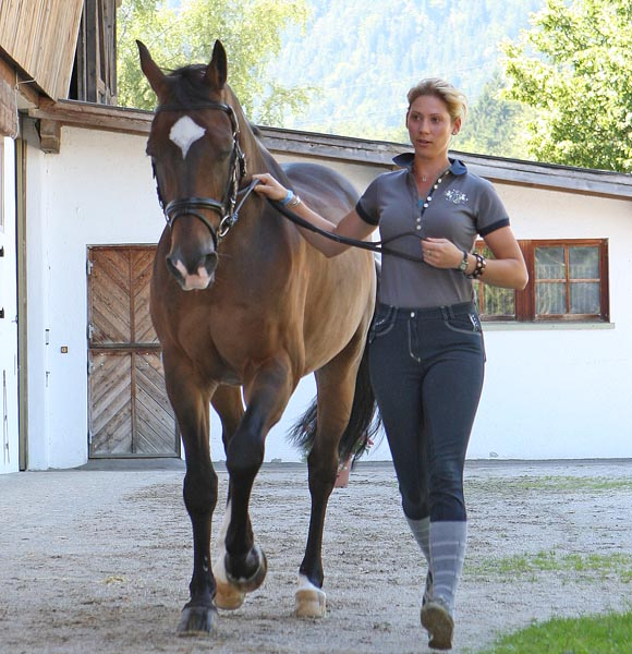 Briana Burgess looking to make her first Australian world championship team eith La Scala at the veterinary check for the Fritzens, Austria selection trial. © 2014 Ken Braddick/dressage-news.com