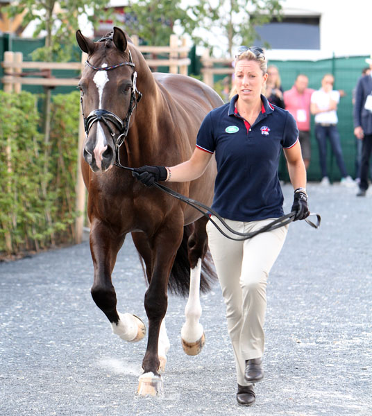 Valegro being led by Charlotte Dujardin, the No. 1 combinatin in the world, in readiness for the Nations Cup at Aachen, Germany. © 2014 Ken Braddick/dressage-newd.co