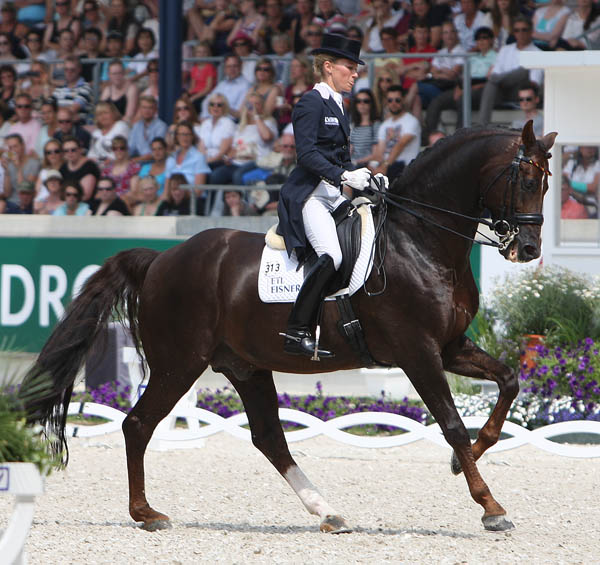 Helen Langehanenberg on Damon Hill NRW. © 2014 Ken Braddick/dressage-news.com