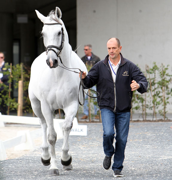 Lars Petersen of Denmark and Willano. © 2014 Ken Braddick/dressage-news.com