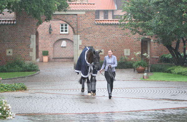 In weather not unusual in this part of Germany, Lyndal Oatley running through the rain with Diva. © 2014 Ken Braddick/dressage-news.com